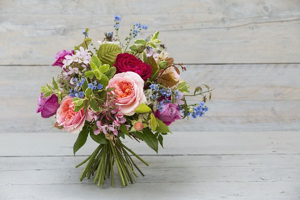Proflowers coupon code free delivery