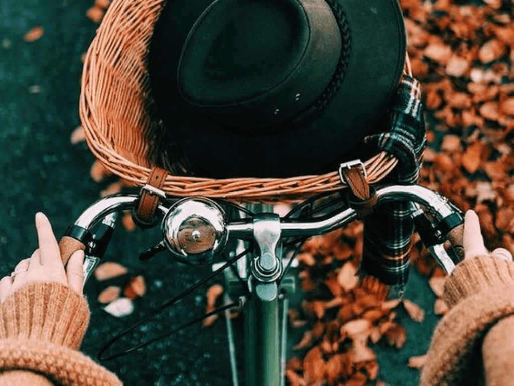 Top Fall/Winter Accessories To Shop - Guides & Secret Tips Coupons & Promo Codes